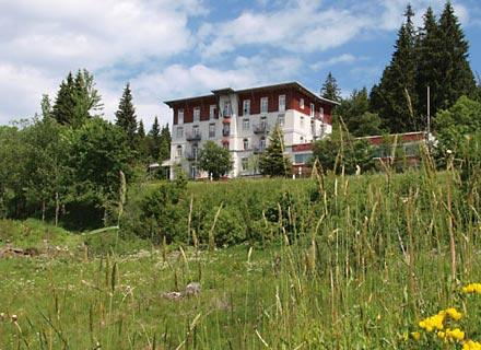 Waldhotel Notschrei Todtnau
